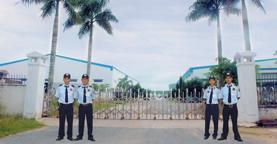 Dịch vụ bảo vệ mục tiêu cố định chuyên nghiệp an toàn nhất tại Thăng Long SSC